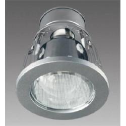 Stropní svítidlo s reflektorem Brilum R-350NG -stříbrná